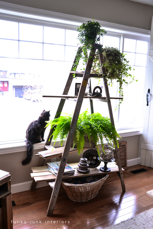 ladder-plant-stand-Funky-Junk-Interiors
