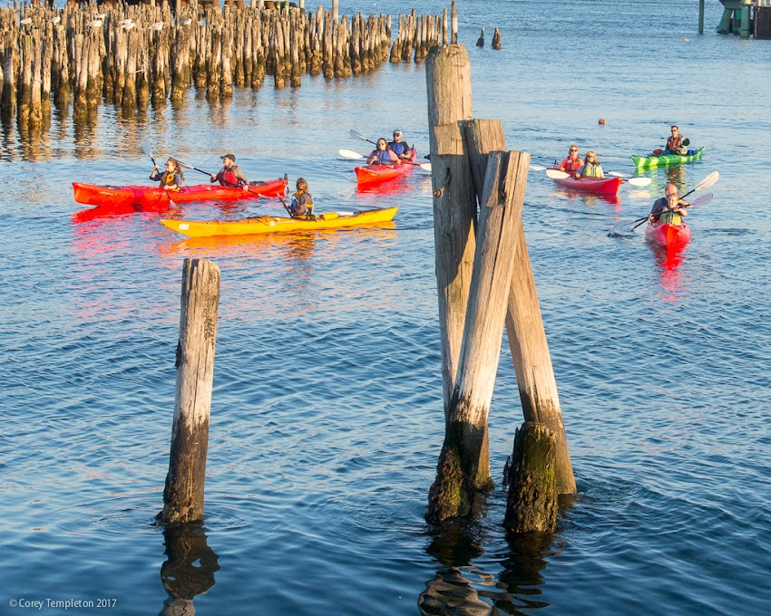 Portland, Maine USA October 2017 photo by Corey Templeton. Kayakers paddling around the old pilings off of the Eastern Waterfront.