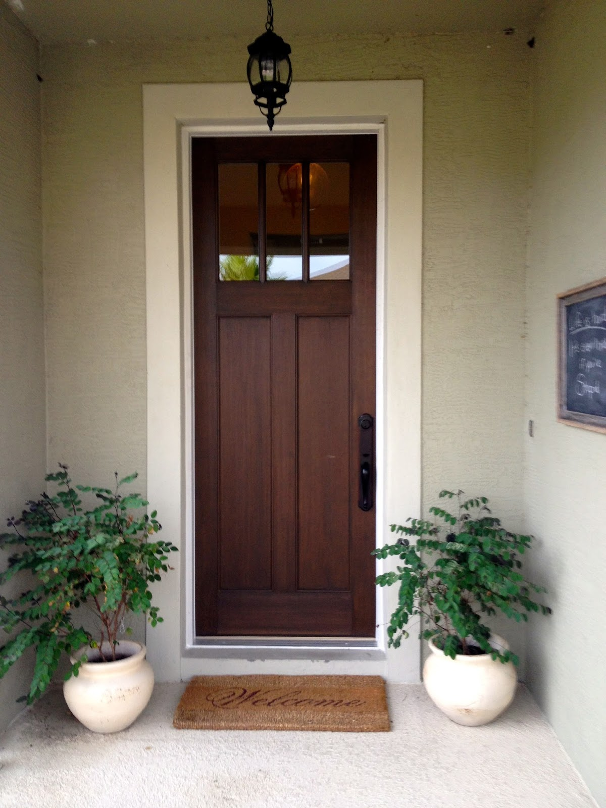 Entry Front Doors: My Home Tour: The First Year