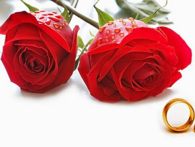 Bunga Mawar paling indah