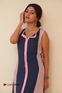 Actress Anu Emmanuel Pictures in Long Dress at Majnu Audio Success Meet 0018