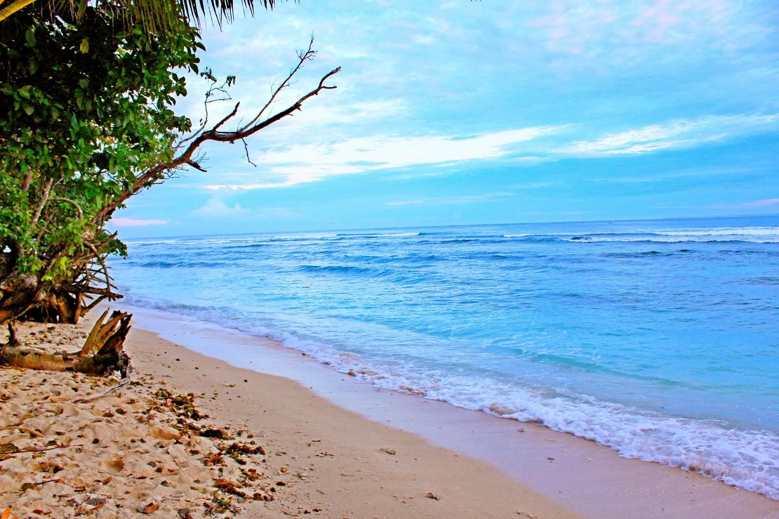 Hasil gambar untuk free image pantai krui