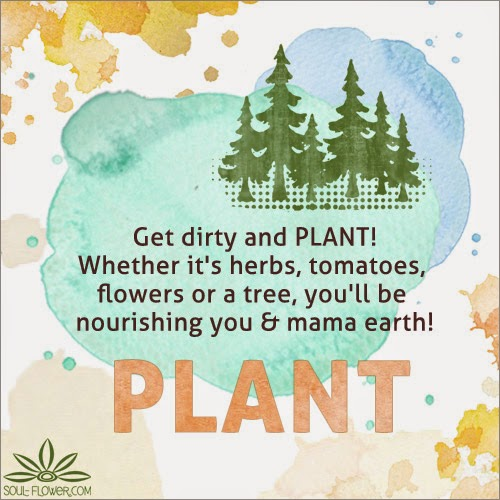 plant share - Earth Day Tips & Helpful Articles