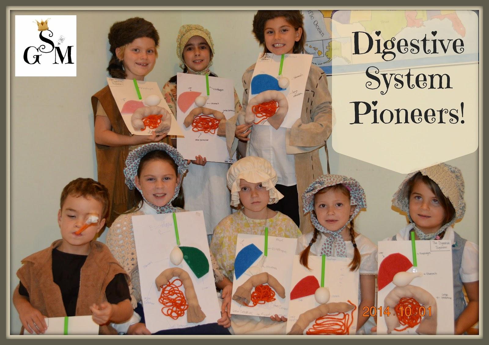 Solagratiamom Circulatory System Fun