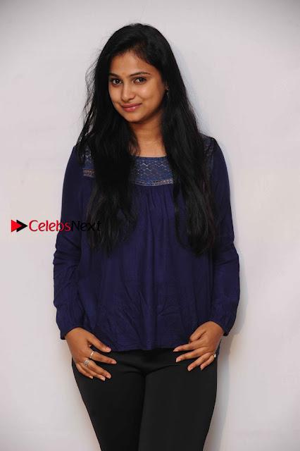 Kannada Actress Kavitha Stills at Srinivasa Kalyana Movie Press Meet  0006.jpg