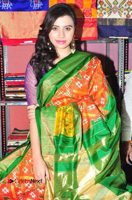 Priyanka Ramana Inaugurates Pochampally IKAT Art Mela  0009.jpg