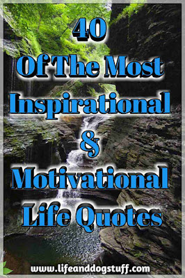 40 Of The Most Inspirational and Motivational Life Quotes.