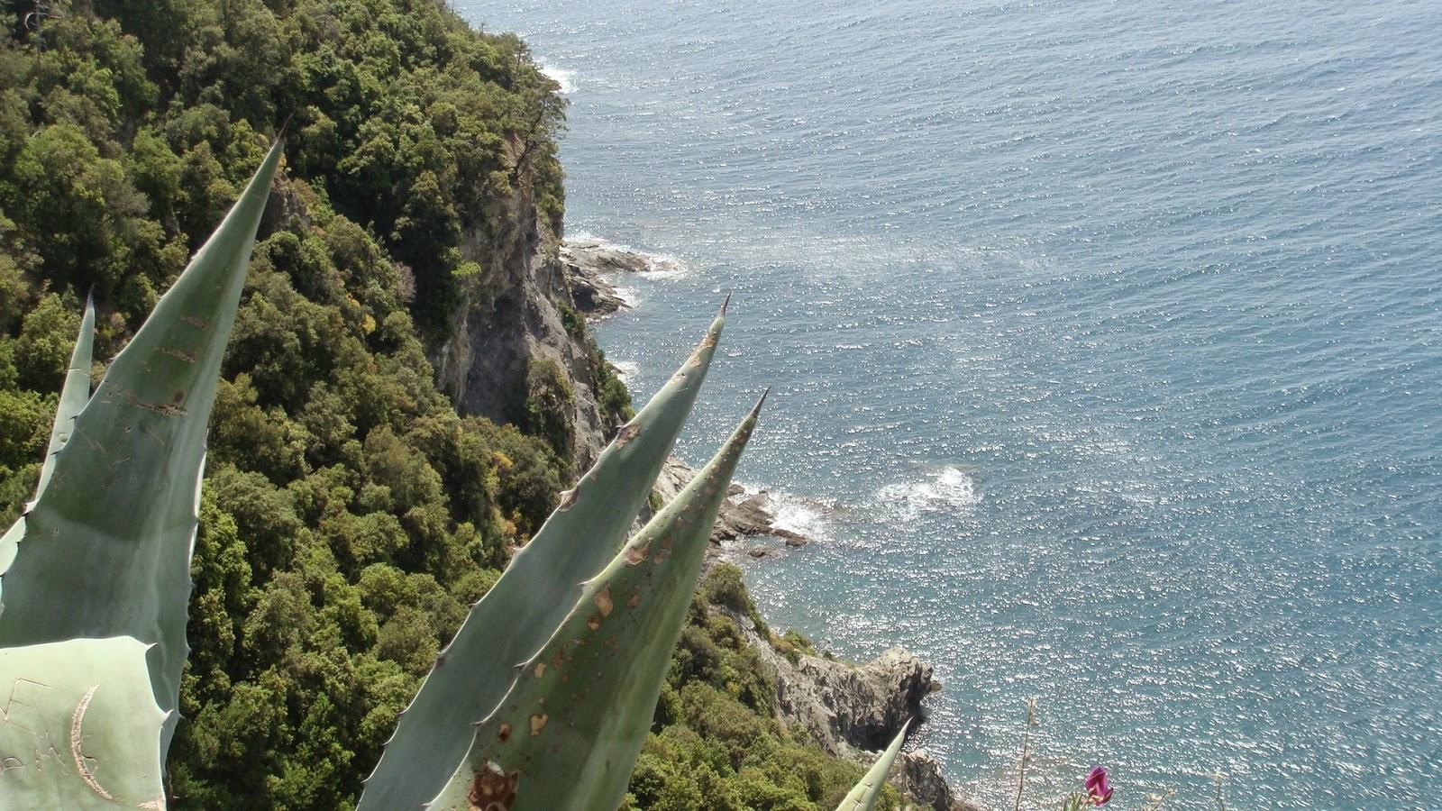 www.italiaansebloemenriviera.nl: No.1 bloemenriviera site! Bekijk het grootste (last minute) aanbod hotels, vakantiehuizen, b&b, agriturismo, appartementen, campings aan de bloemenriviera, Italië