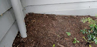 knoxville pest control, mulch