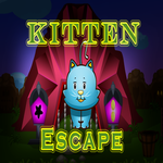 8b Kitten Escape Walkthro…