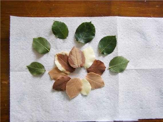 как в домашних условиях сделать шоколадные листья