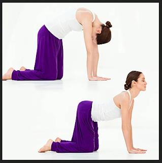 Yoga Peninggi Badan