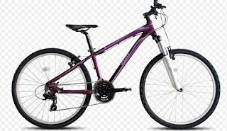 Harga Sepeda Polygon Gunung Women's (Wanita)