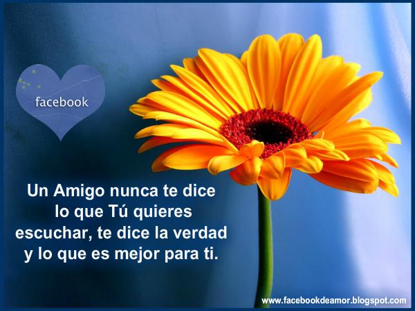 Best Frases Con Imagenes De Amor Y Amistad Para El Facebook Image