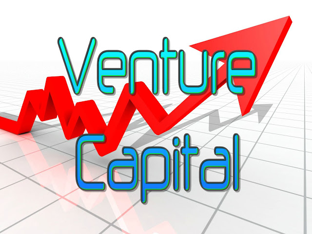 What is Venture Capital?