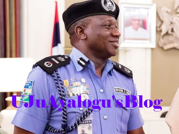 Group calls for IG of police to be sacked over statement on Benue attacks