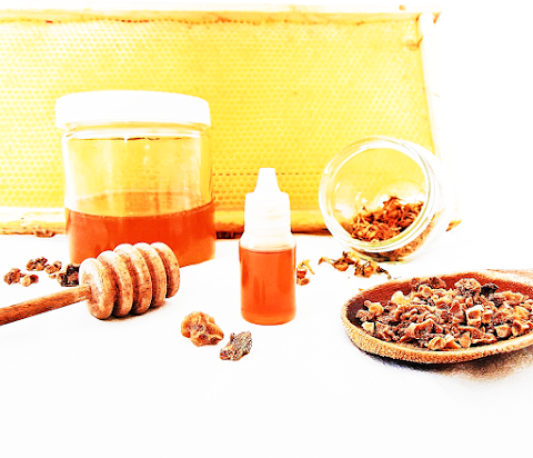Benefits of Propolis and Why You Need To Start Using It