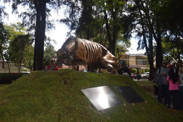 Parque de los perros Guadalajara