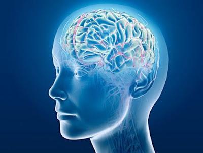 El efecto de la oración en el cerebro es saludable
