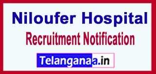 Niloufer Hospital Recruitment Notification 2017