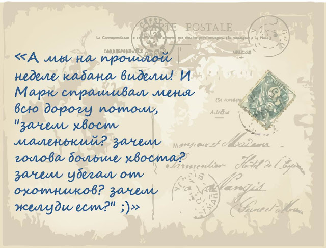 pochemu-u-kabana-bolshaja-golova-magija-biologii