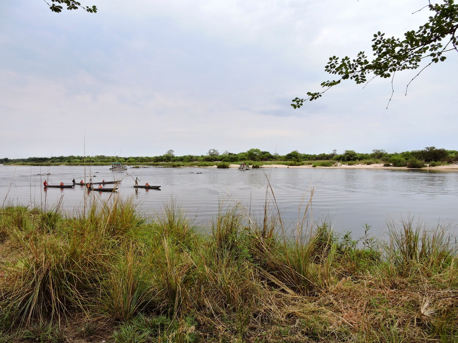Tourist in their hollowed-out tree trunks boats on the Okavango River