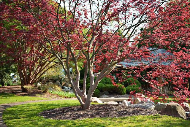 Shiojiri Garden
