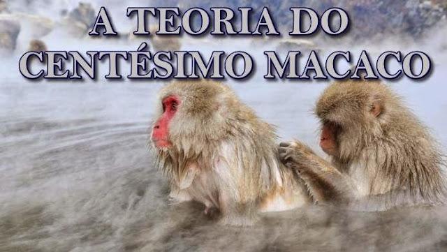 [Imagem: macaco-frio-002.jpg]