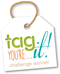 Soy Ganadora del Reto #62 de Tag you're It Challenge!!