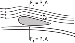Alat-Alat yang Menggunakan Prinsip Hukum Bernoulli
