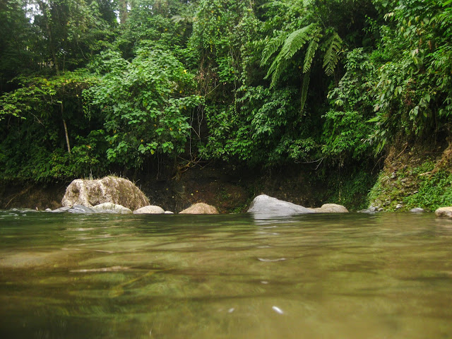 Sembahe river flow comes from the mountains in Tanah Karo