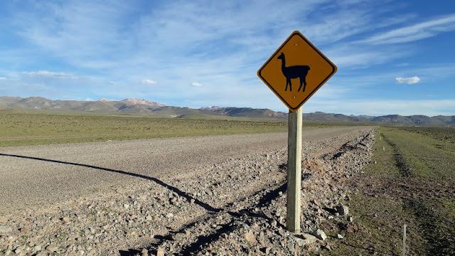 Auch Lamas und Nandus können in den Anden die Straße überqueren. Die Straßenschilder weisen darauf hin.