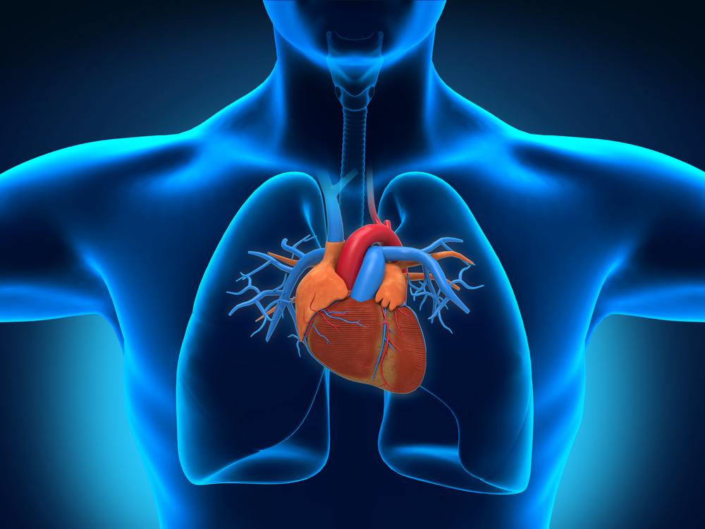 Cara Menjaga Kesehatan Jantung dengan Mudah dan Alami