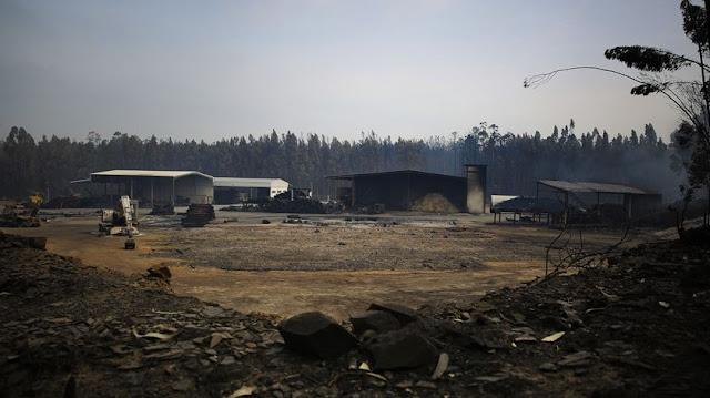 Resultado de imagem para pequenas empresas arderam nos fogos
