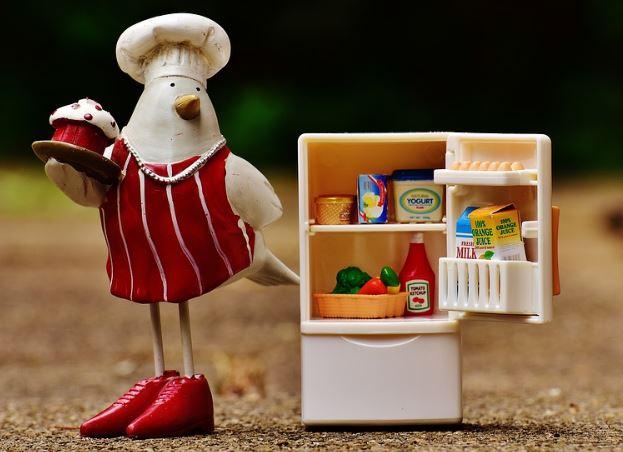 Bactérias que vivem na geladeira e estragam os alimentos