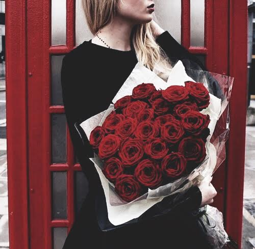 red roses red roses pinterest