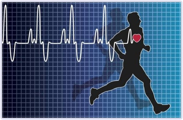 Average-Heart-Rate-During-Exercise
