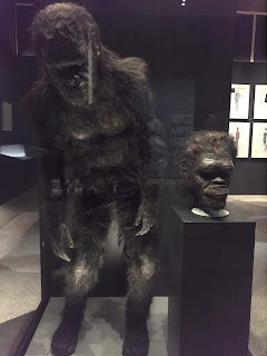 Ape suit from 2001: A Space Odyssey