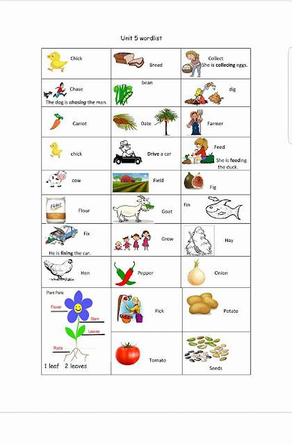 أوراق عمل لغة أنجليزية فصل ثالث