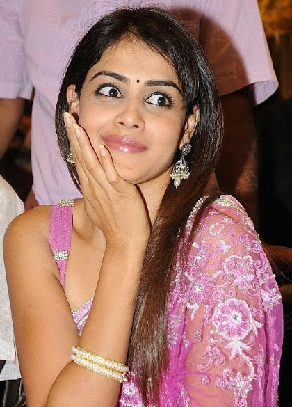 Hot Pictures Genelia Dsouza Hot Pictures With Mini Biography-6494