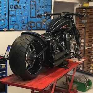 Harley Davidson Sportster 1200 Custom CA
