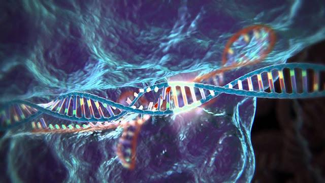 CRISPR-CAS9 PARA 'GENETICAMENTE MODIFICAR' HUMANOS