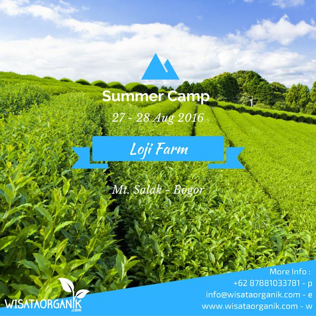 Summer Camp Loji Farm