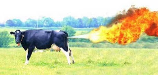 Cow Power: Renewable Energy - Its a Gas