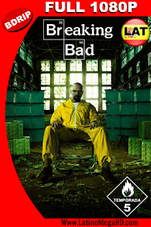 Breaking Bad Temporada 5 (2012) Latino Full HD BDRIP 1080P - 2008–2013