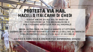 PROTESTA VIA MAIL - MACELLO DI GHEDI