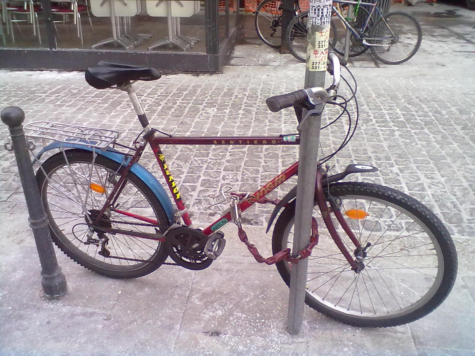 In Bici Ad Alessandria La Mia Bici Prendersi Cura Della Propria