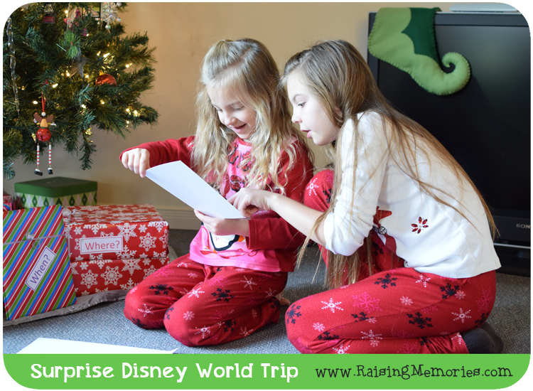 Disney Trip Reveal Christmas
