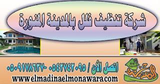 شركة تنظيف فلل بالمدينة المنورة المنورة 0542742095 -0509178637 | المدينة المنورة