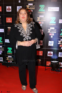Bollywood Celebrities on the Red Carpet Of Zee Cine Awards 2017 Exclusive 072.JPG